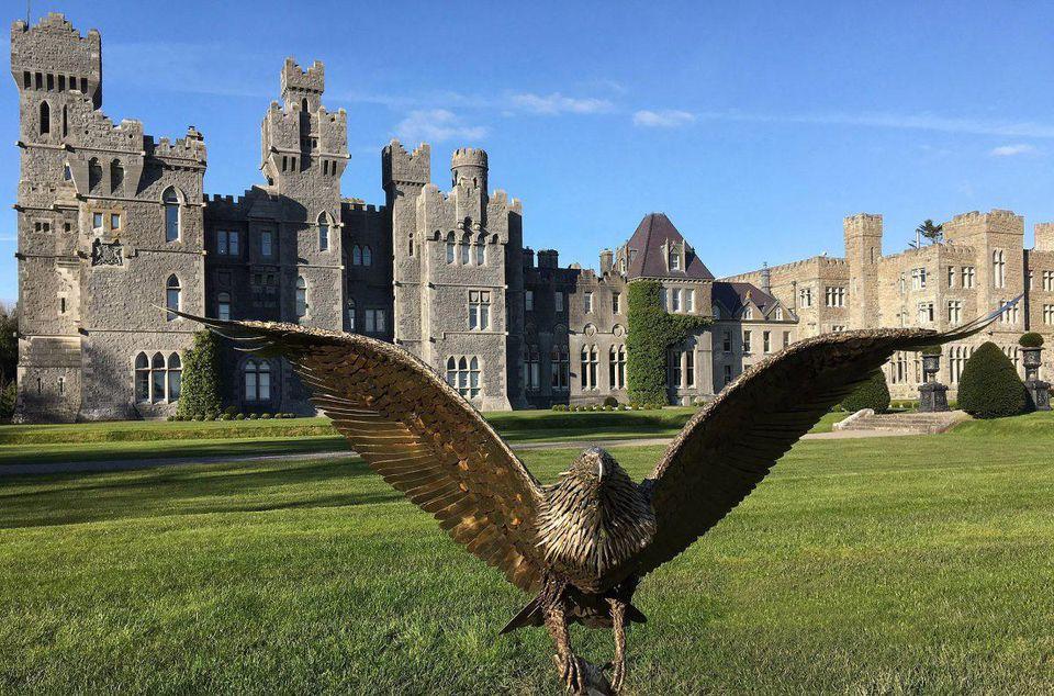 Ashford Castle - Falconry